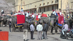 India Rajasthan Amber elephants carrying drivers line up in depot lot Stock Footage
