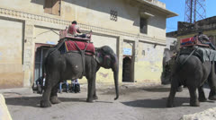 India Rajasthan Amber saddled elephant stands and others move past Stock Footage