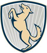 prancing dog side shield . - stock illustration