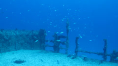 Shipwreck Mexican Caribbean Stock Footage