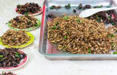 Fried insects are regional  thailand... Stock Photos