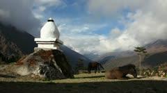 Buddhist stupa and Himalayas Stock Footage
