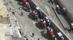 India Amber fort elephants coming and going Stock Footage