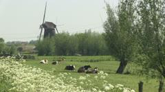Dutch windmill Stock Footage