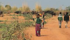 India  village women with firewood Stock Footage