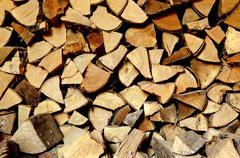 a staple of biomass - stock photo