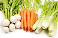Stock Photo of turnip, carrot and celery from garden