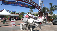 Tourists taking a ride on a horse and carriage at kemah Stock Footage