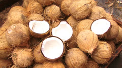 COCONUT - stock footage