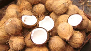 Stock Video Footage of COCONUT