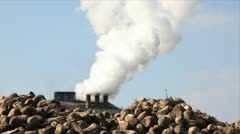 Proccesing sugar beet in sugar refinery - stock footage
