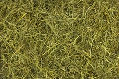 straw as background, texture or pattern - stock photo