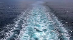 Water trail in the sea Stock Footage