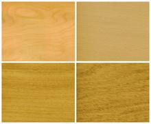 Wood, veneer: ice birch, beech, elm, oak Stock Photos