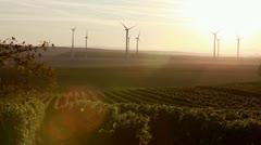Vineyards and wind turbines in Deutschkreutz, Burgenland, Austria Stock Footage