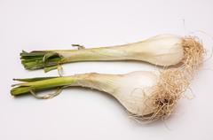 Onion Stock Photos