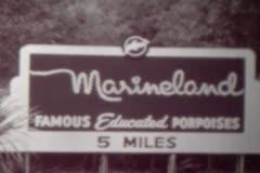 Marineland Montage Stock Footage