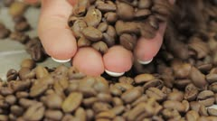 Female hands gathering coffee beans Stock Footage