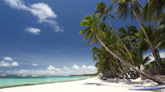 White beach with palms Stock Footage