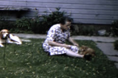 Woman playing with dog and cat Stock Footage
