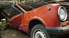 Crashed car after hurricane. A large tree fell on a car. - stock footage