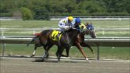 Stock Video Footage of Horse Racing