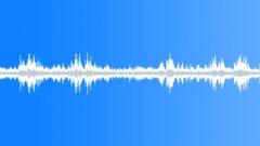 Sound of different forest birds in springtime, European robin, Song thrush - sound effect