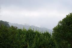 Fog on mounten Stock Photos