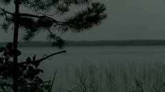 Lake and pine branch in the evening Stock Footage