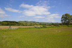 Yorkshire wolds meadows Stock Photos