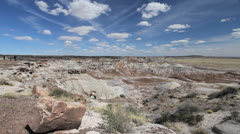 Arizona Petrified Forest at Blue Mesa Viewpoint Stock Footage