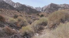 California Mount Whitney Stock Footage
