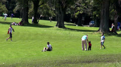 Parks, People, Nature, Summer Activities, Weekends - stock footage