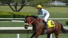 Jockey gallops race horse after finish Stock Footage