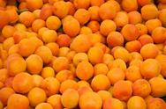 Stock Photo of fresh organic apricots