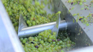 Stock Video Footage of Separating grape juice and pulp