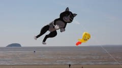 Cat kite at Kite festival Weston-super-Mare Stock Footage