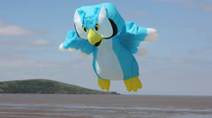 Owl kite at Weston-super-mare festival Stock Footage