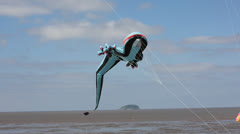 Kite festival Weston-super-Mare Stock Footage