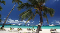 Sun umbrellas and chaise longues - stock footage