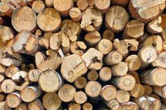 Timber stack Stock Photos