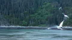 Alaska coast forest mountain and beautiful waterfall from ship HD 7239 Stock Footage