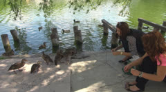 Two cheerful  girls in park, near water .Give bread,to,wild ducks Stock Footage