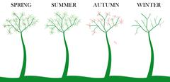 tree four season - stock illustration