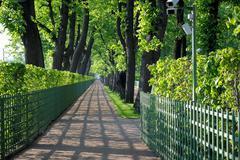 alley of the summer garden. - stock photo