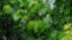 Raindrops on a window pane Stock Footage