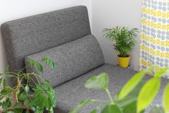 Chaise longue and plants in the living room Stock Photos