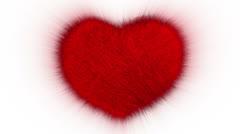 Furry Heart Stock Footage