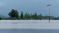 Flooded murnau moor Stock Footage