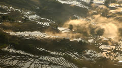 Rice Terraces Stock Footage